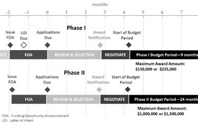 Grant Timelines: What Happens and When (Part II)